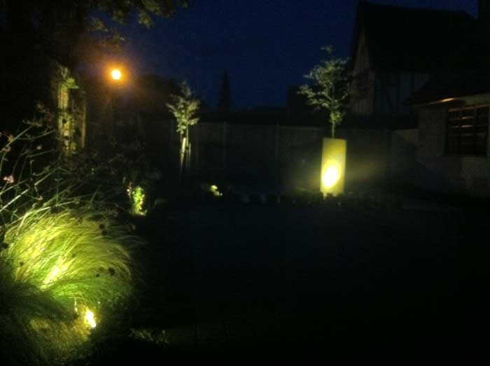 subtle garden lighting to accentuate plants and trees