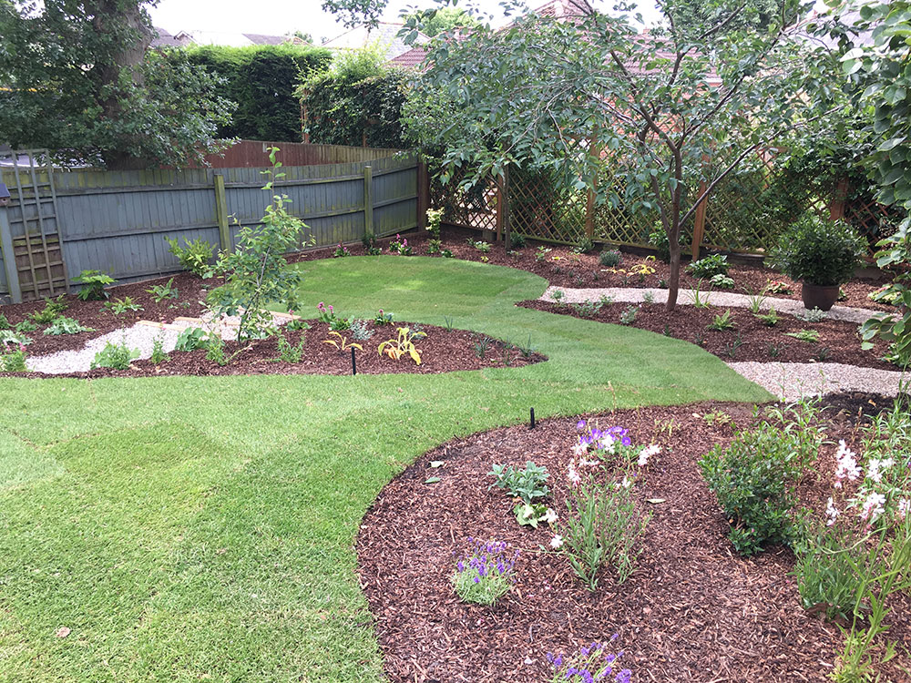 sloping garden with sweeping curved lawn leading to a tree which screens the view of the neighbours property