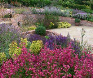 bee friendly plant combination in terraced garden