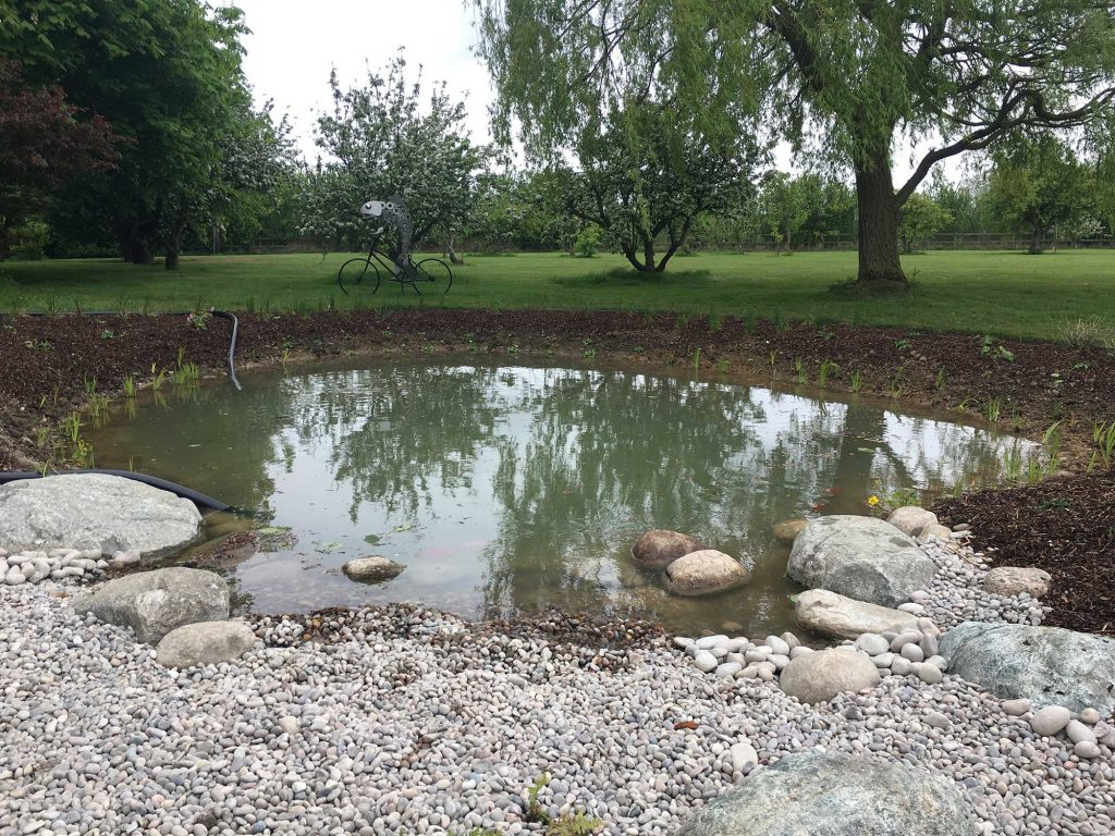 wildlife pond with extensive lawns beyond