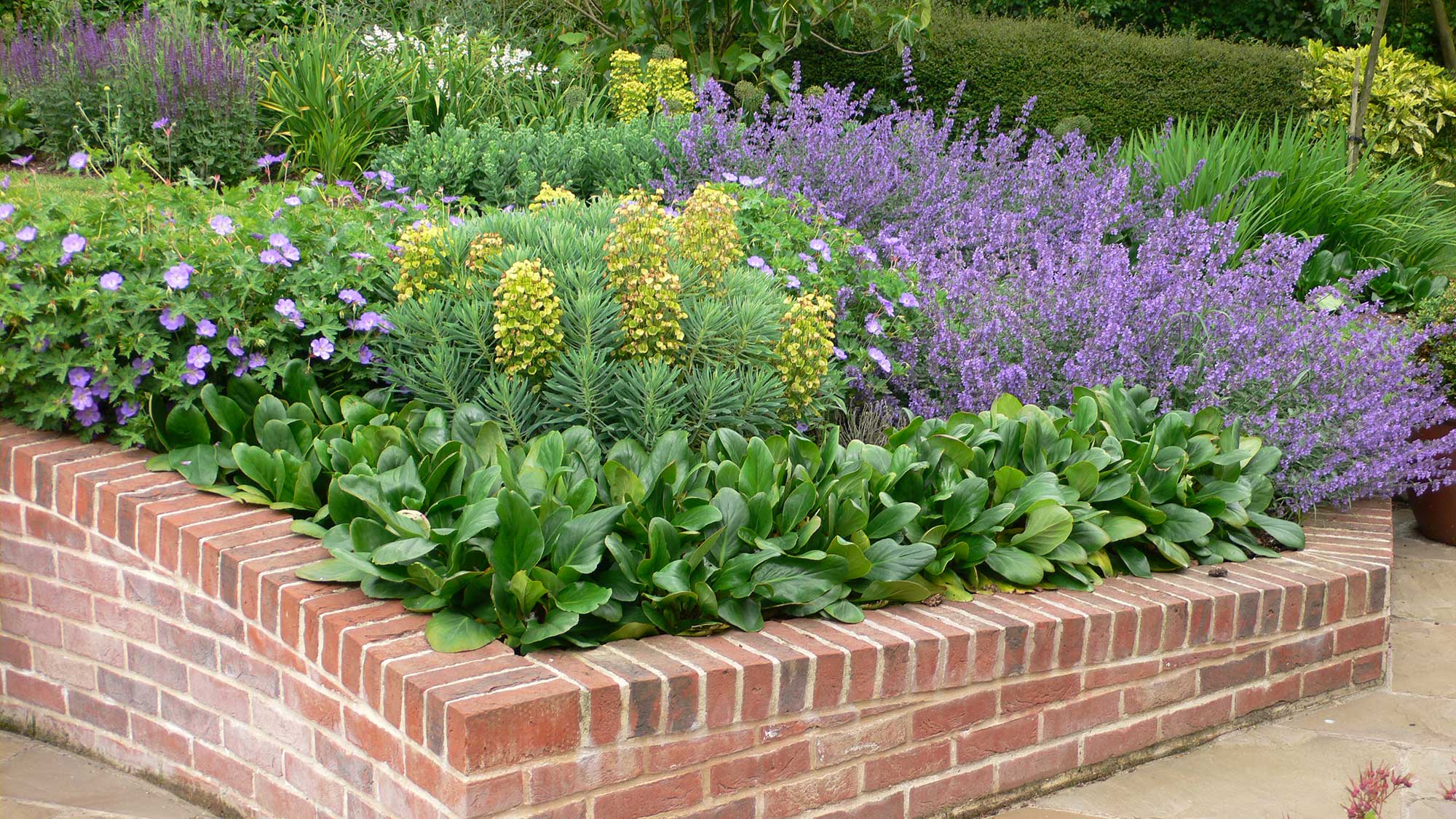 Designing and Building Low Maintenance Planting Schemes - Hollandscapes