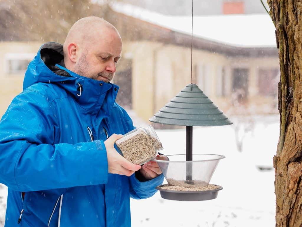winter gardening jobs - feed the birds