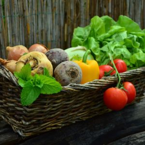 create a vegetable garden