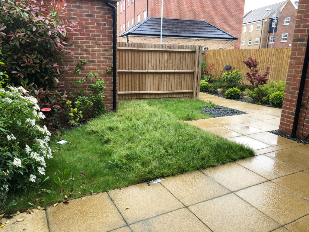 new build back garden with lawn and paving