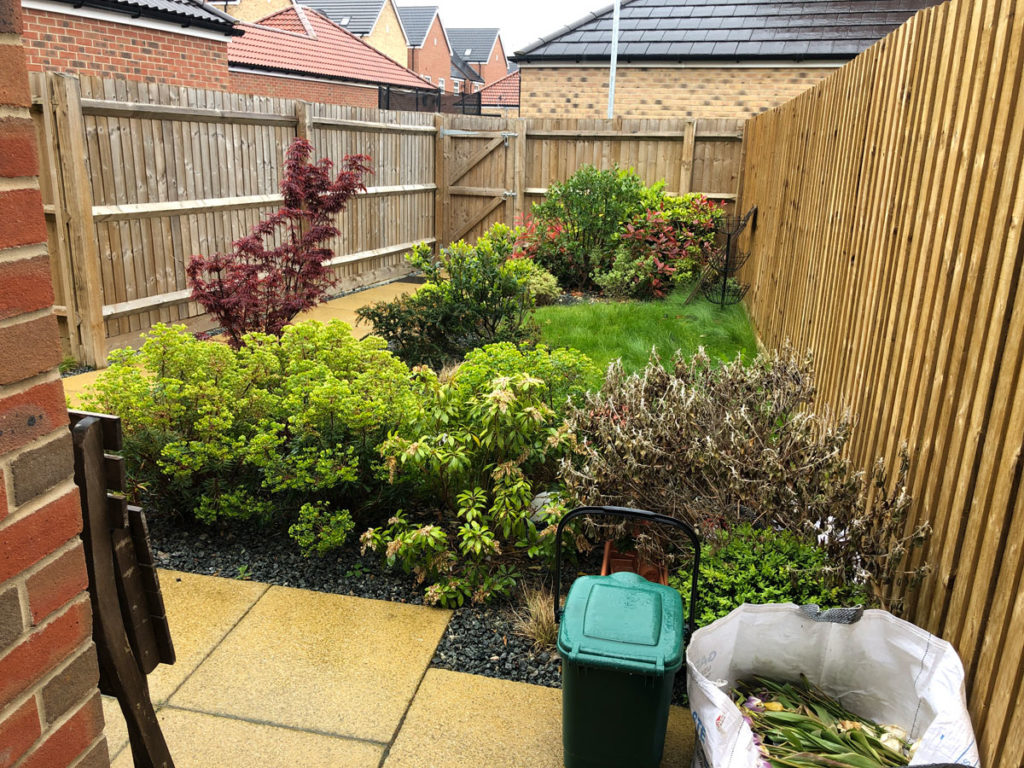 narrow back garden with lawns, planting and small gate at the far end