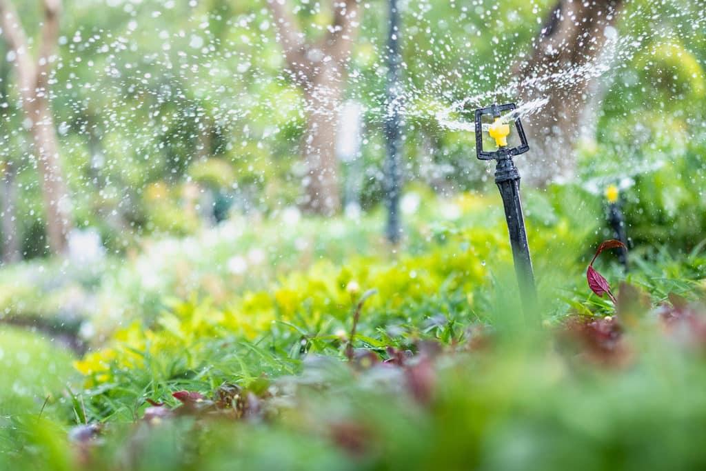 irrigation sprinkler for watering your garden