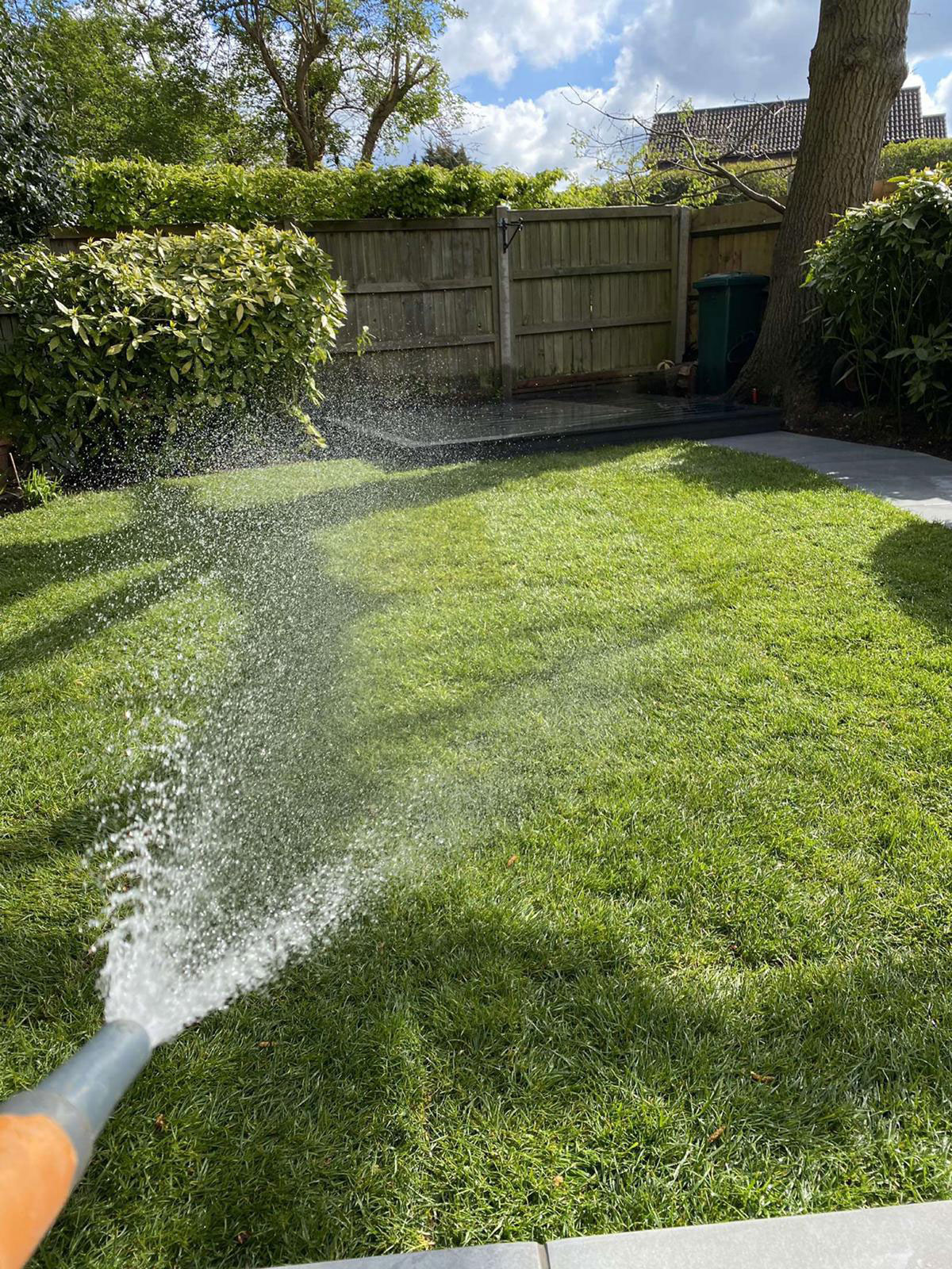 Watering newly laid lawn with a hosepipe